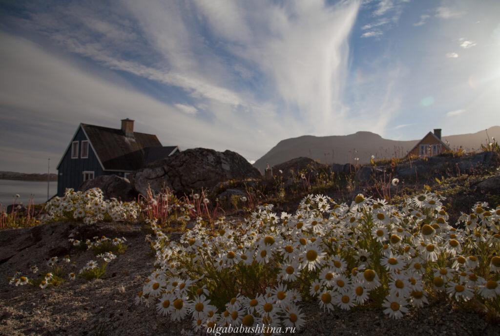 Домики Гренландия